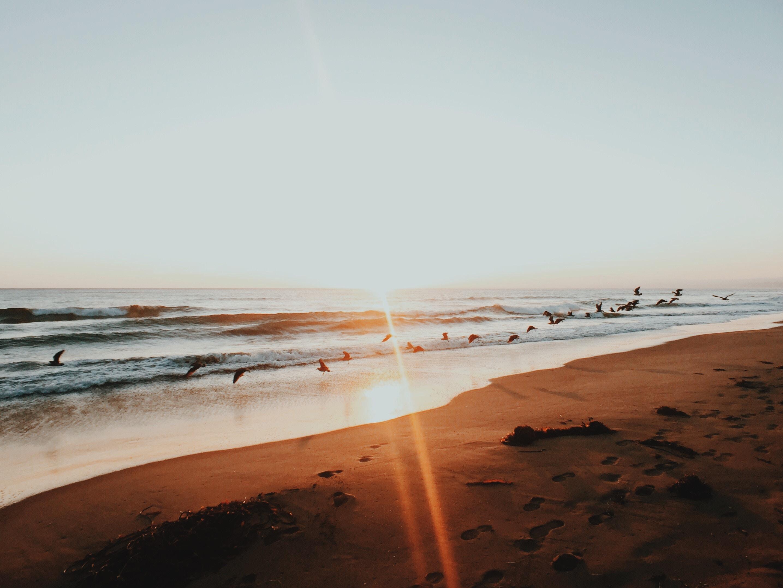 Healthy Life Recovery - San Diego Rehab