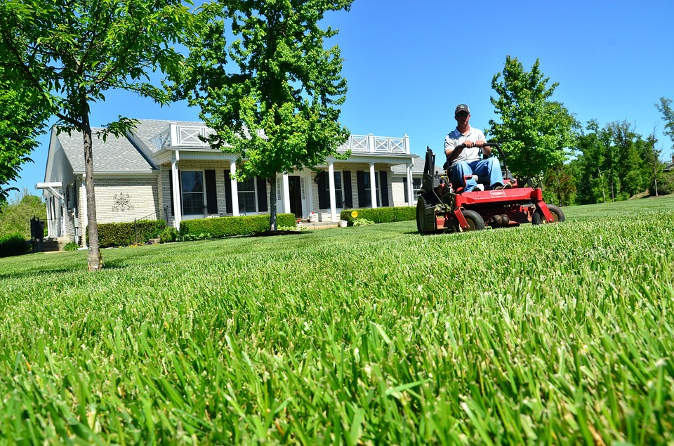 My Three Sons Lawn Services image 1