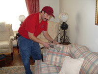 A Dorman Professional Carpet Cleaning Co image 3