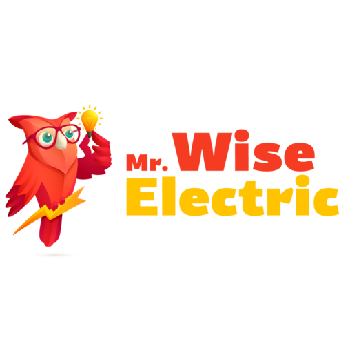 Mr Wise Electric