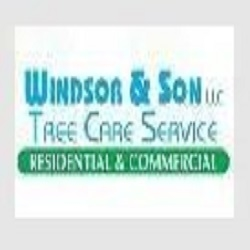Windsor & Son Tree Service