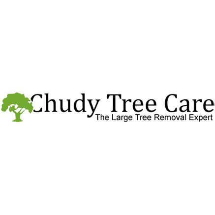 Chudy Tree Care image 0