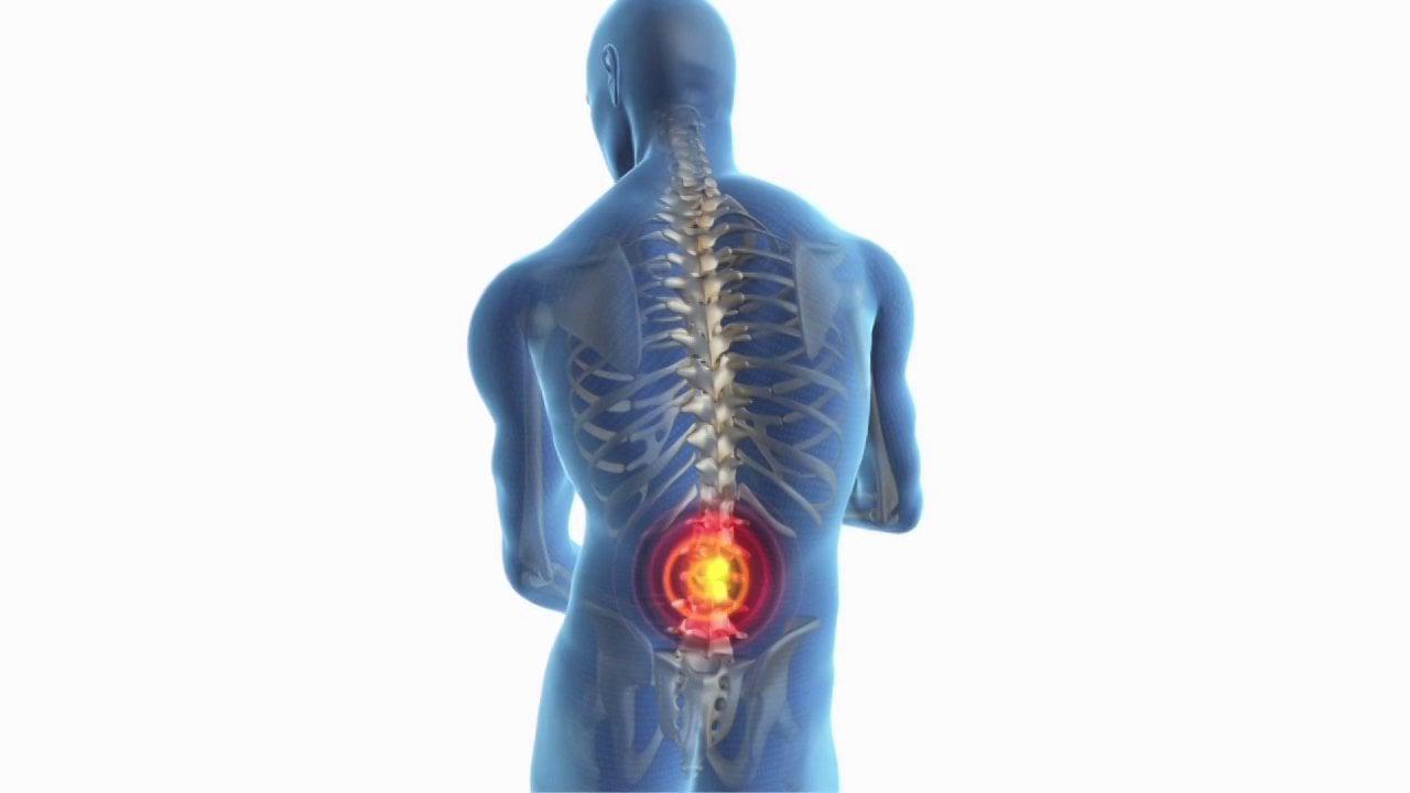 North Broward Chiropractic & Wellness image 6