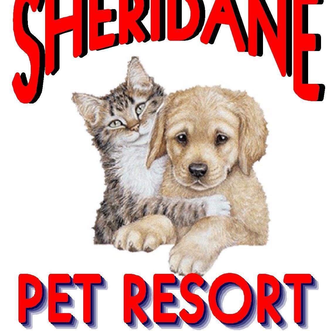 Sheridane Kennels Pet Resort image 1