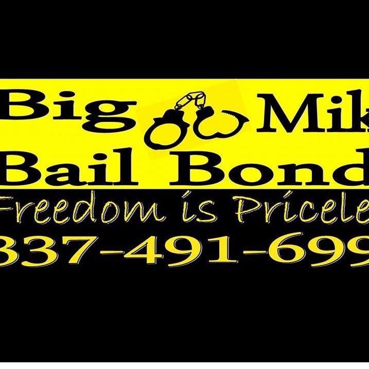 Big Mike Bail Bonds image 5