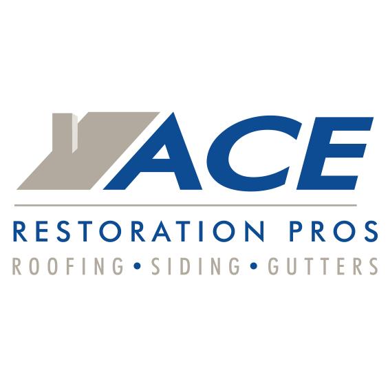Ace Restoration Pros Inc Citysearch