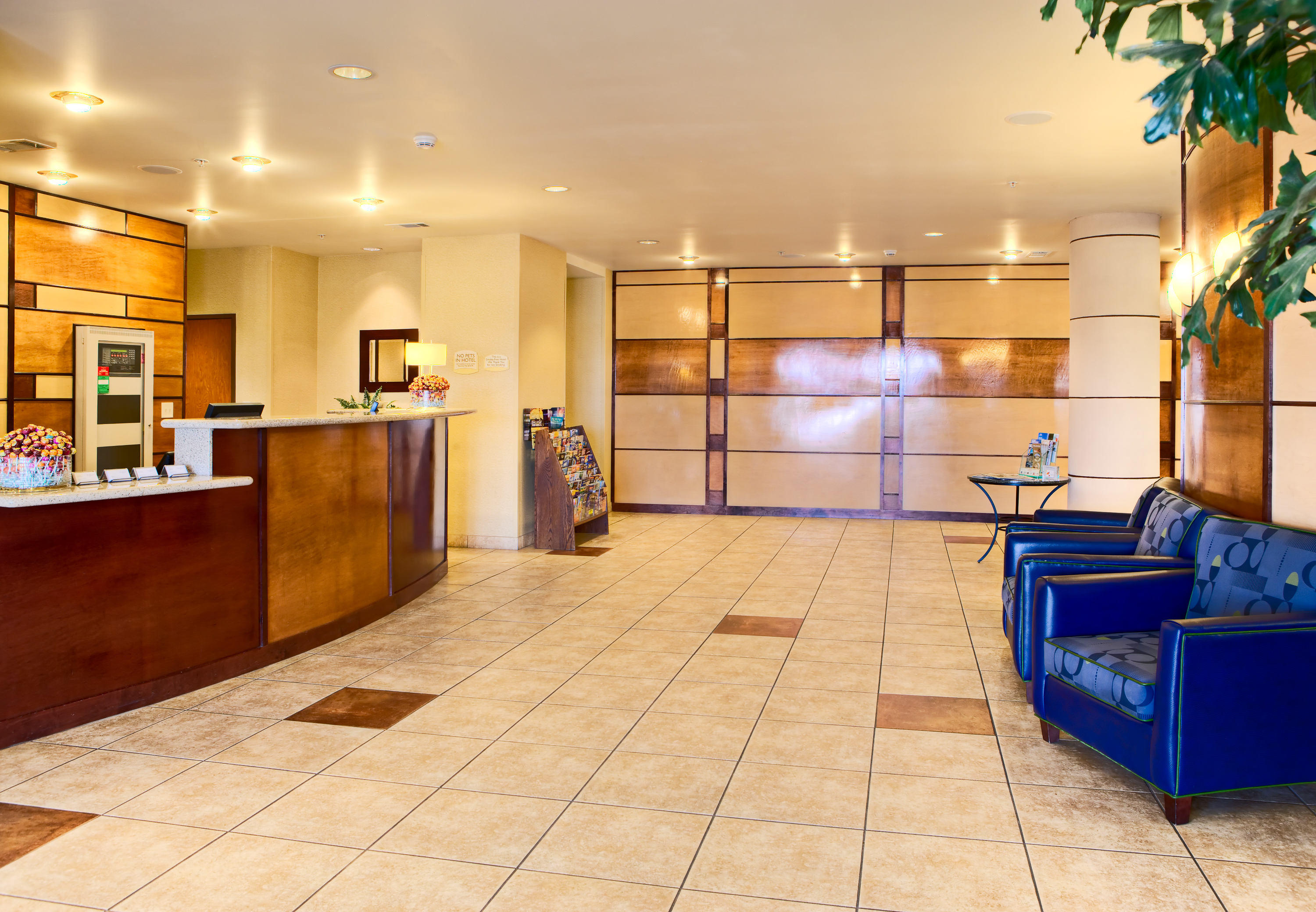 SpringHill Suites by Marriott Ardmore image 11