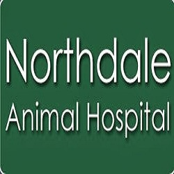 Northdale Animal Hospital image 3