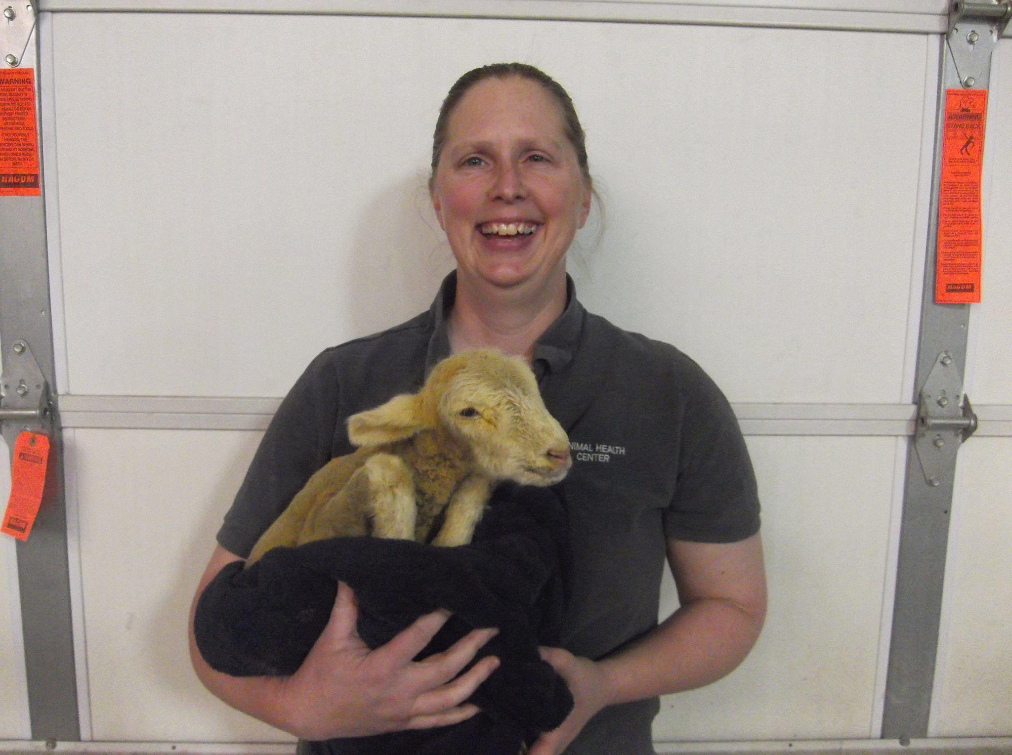 Garver's Animal Health Center image 50