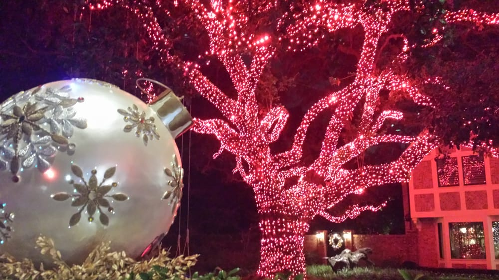 TNT Tree Service 2261 Northpark Drive Kingwood, TX Tree Services ...