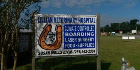 Lillian Veterinary Hospital image 0