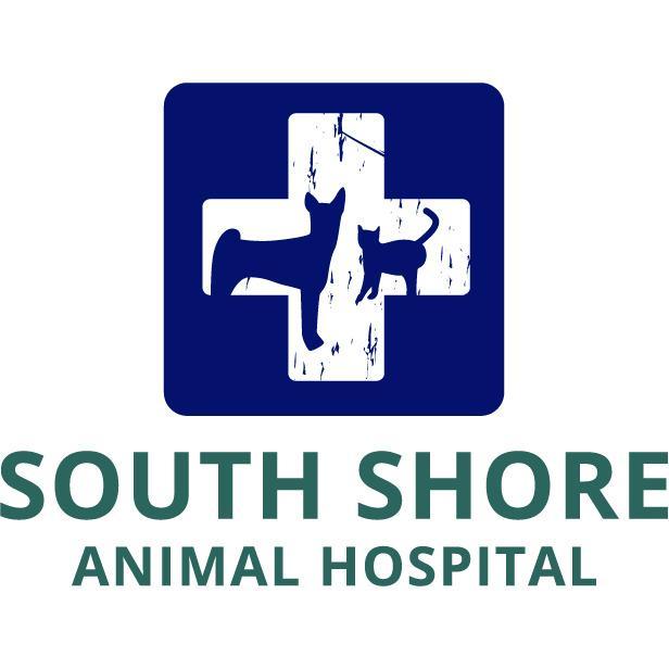 South Shore Animal Hospital