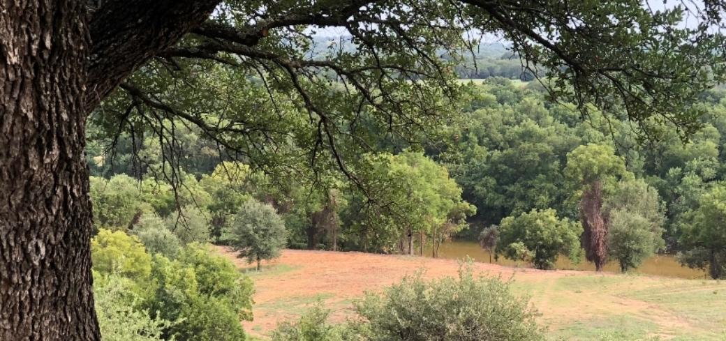 Creekside Rural Investments image 0