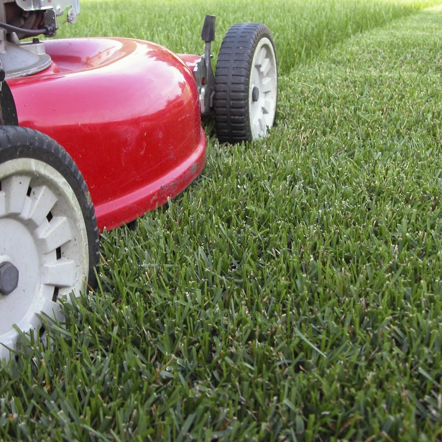 A1 Lawn & Ground Maintenance Inc.