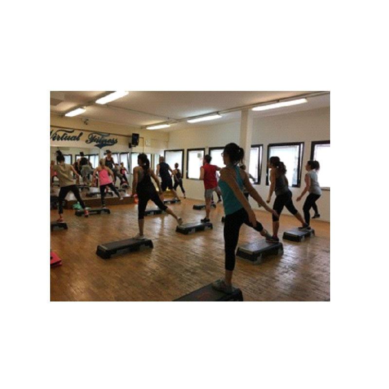 Palestra Virtual Fitness 2.0