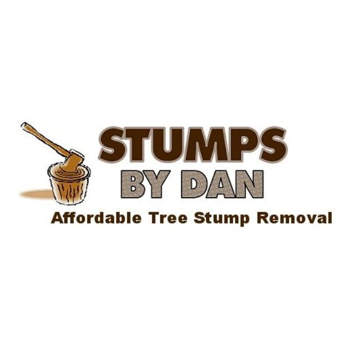 Stumps by Dan