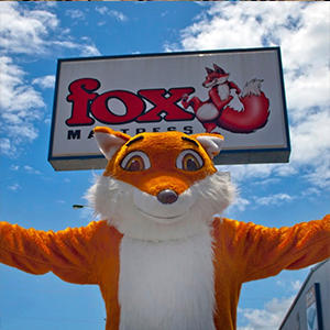 Fox Mattress image 3