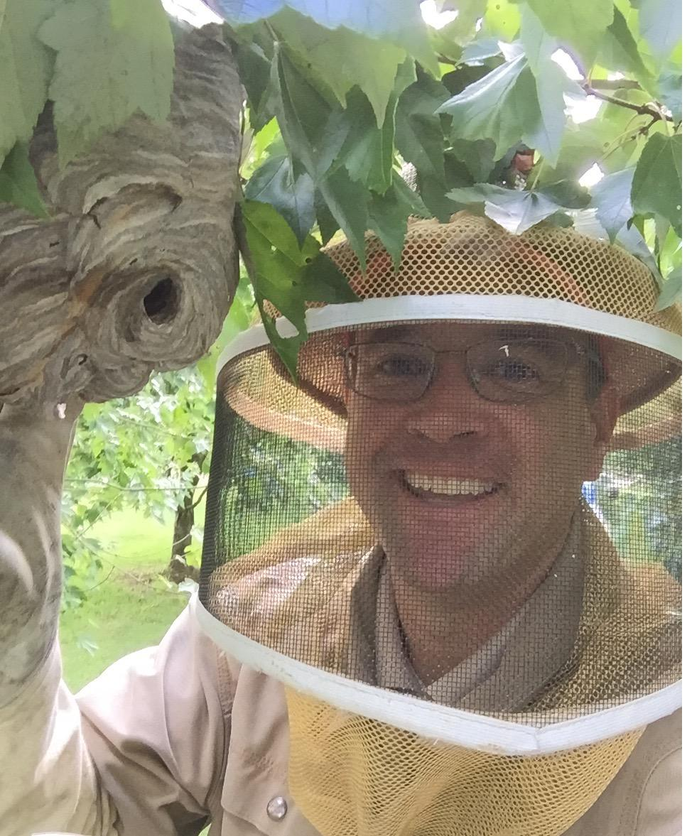 The Bee Man image 3