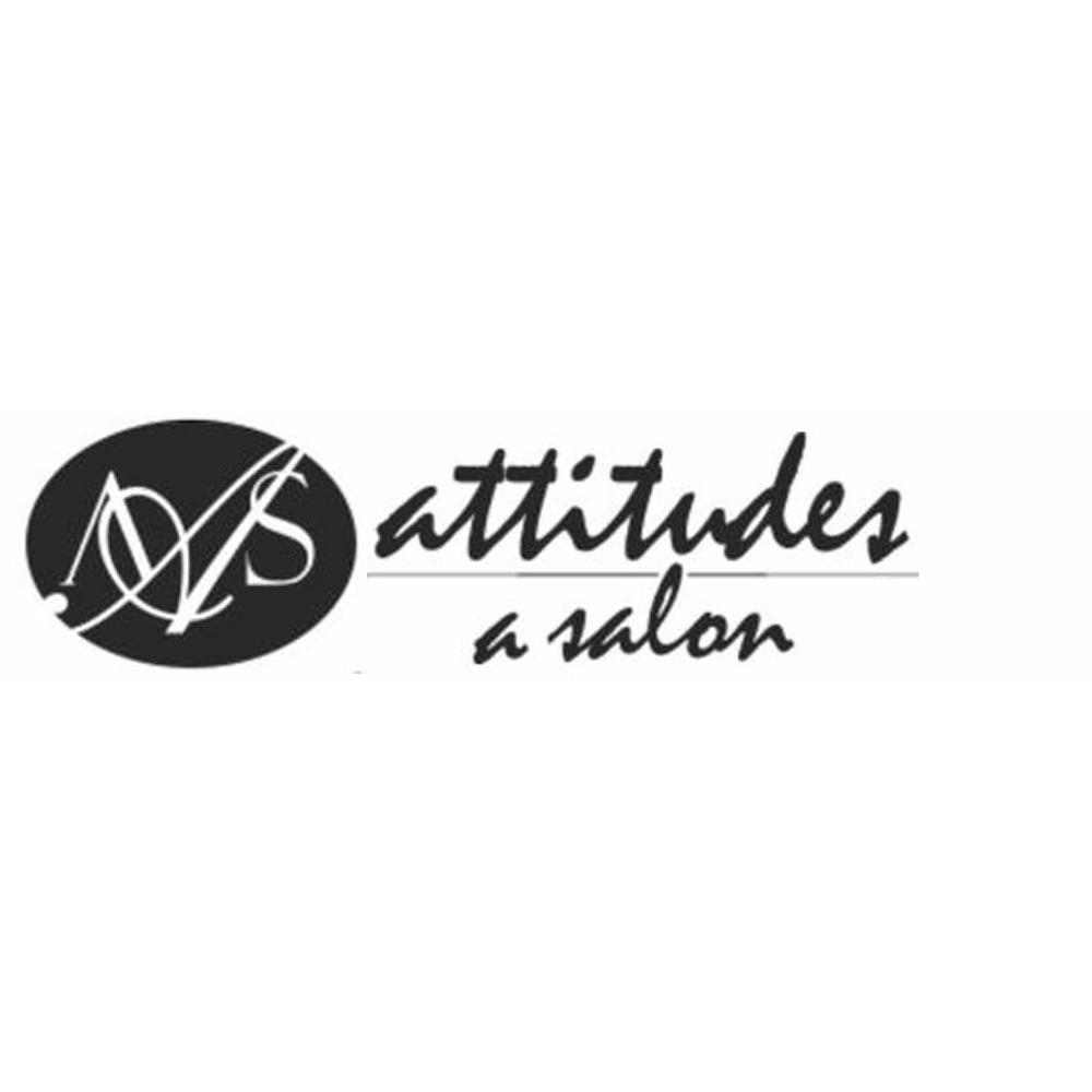 Attitudes A Salon image 4