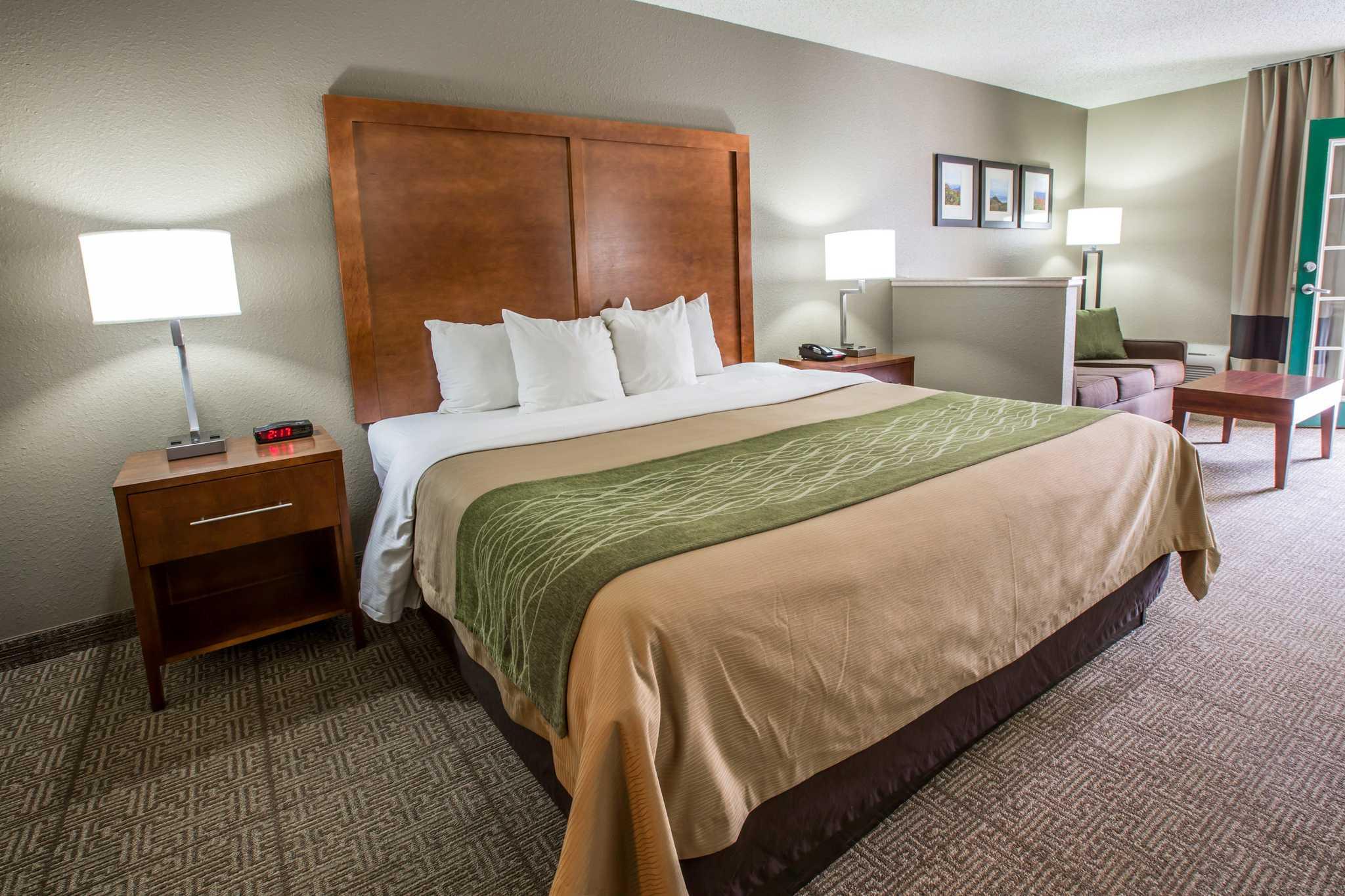 Comfort Inn & Suites at Dollywood Lane image 29