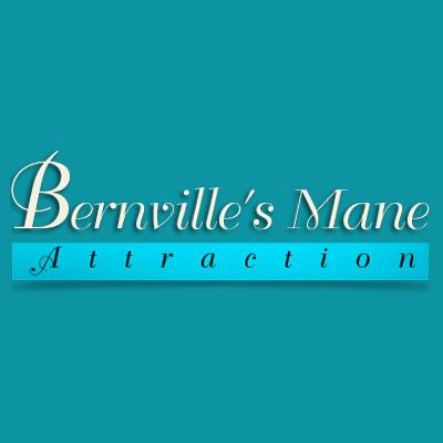 Bernville's Mane Attraction image 0