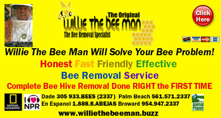 Willie The Bee Man, Inc. image 0