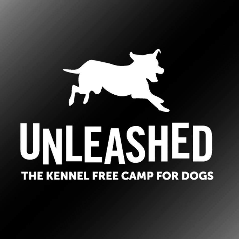 Unleashed Dog Camp