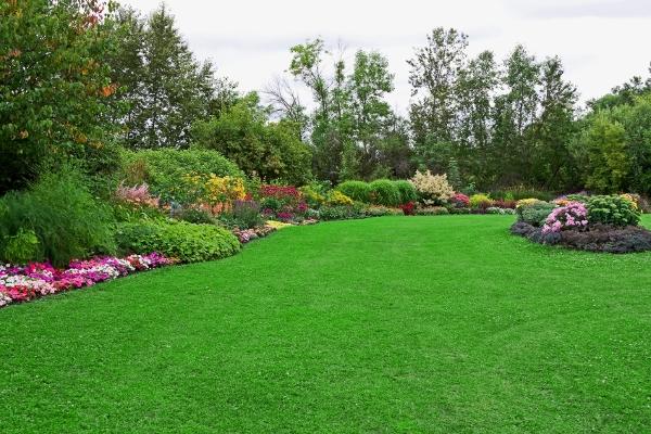Swingle Lawn, Tree & Landscape Care image 4