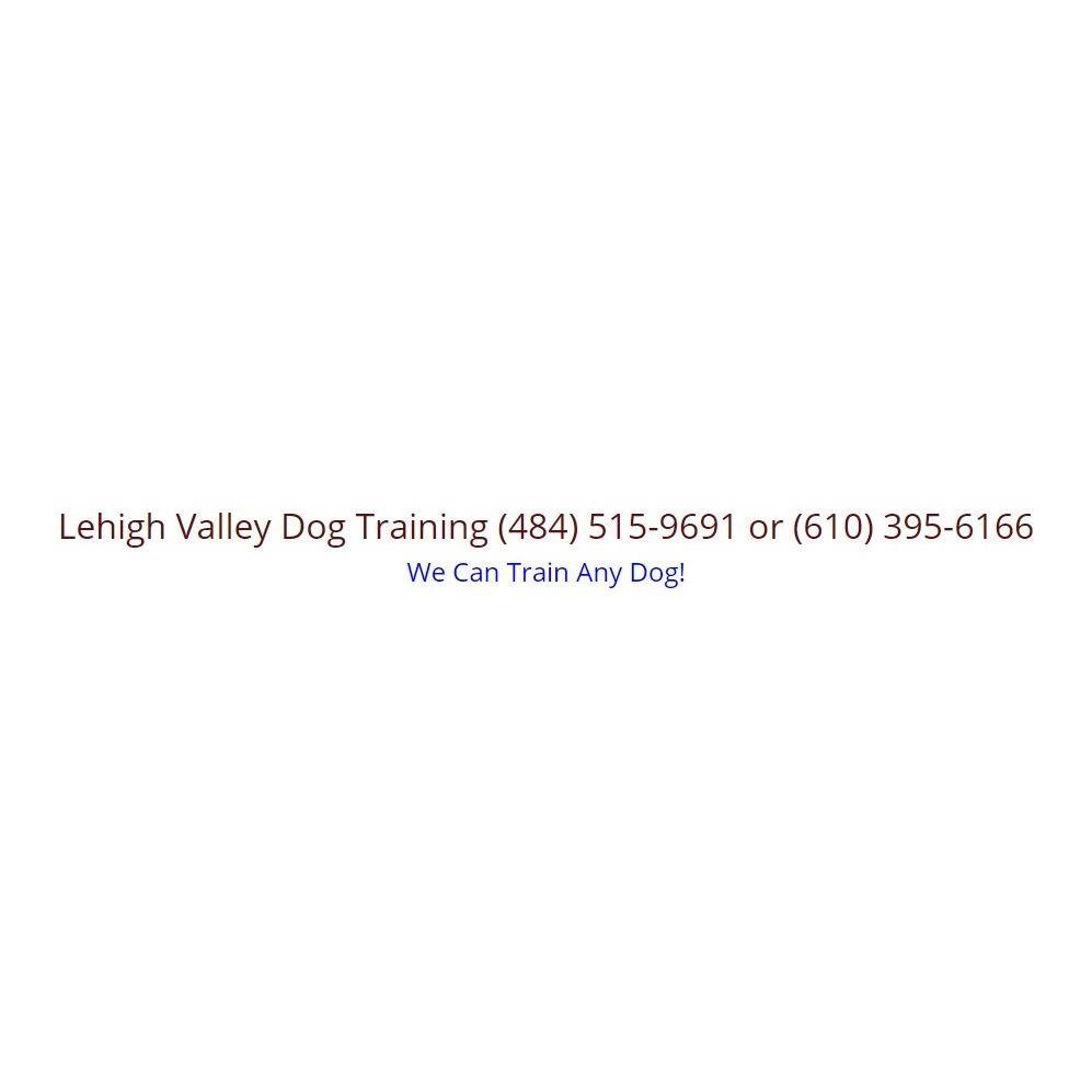 Lehigh Valley Dog Training and Behavior