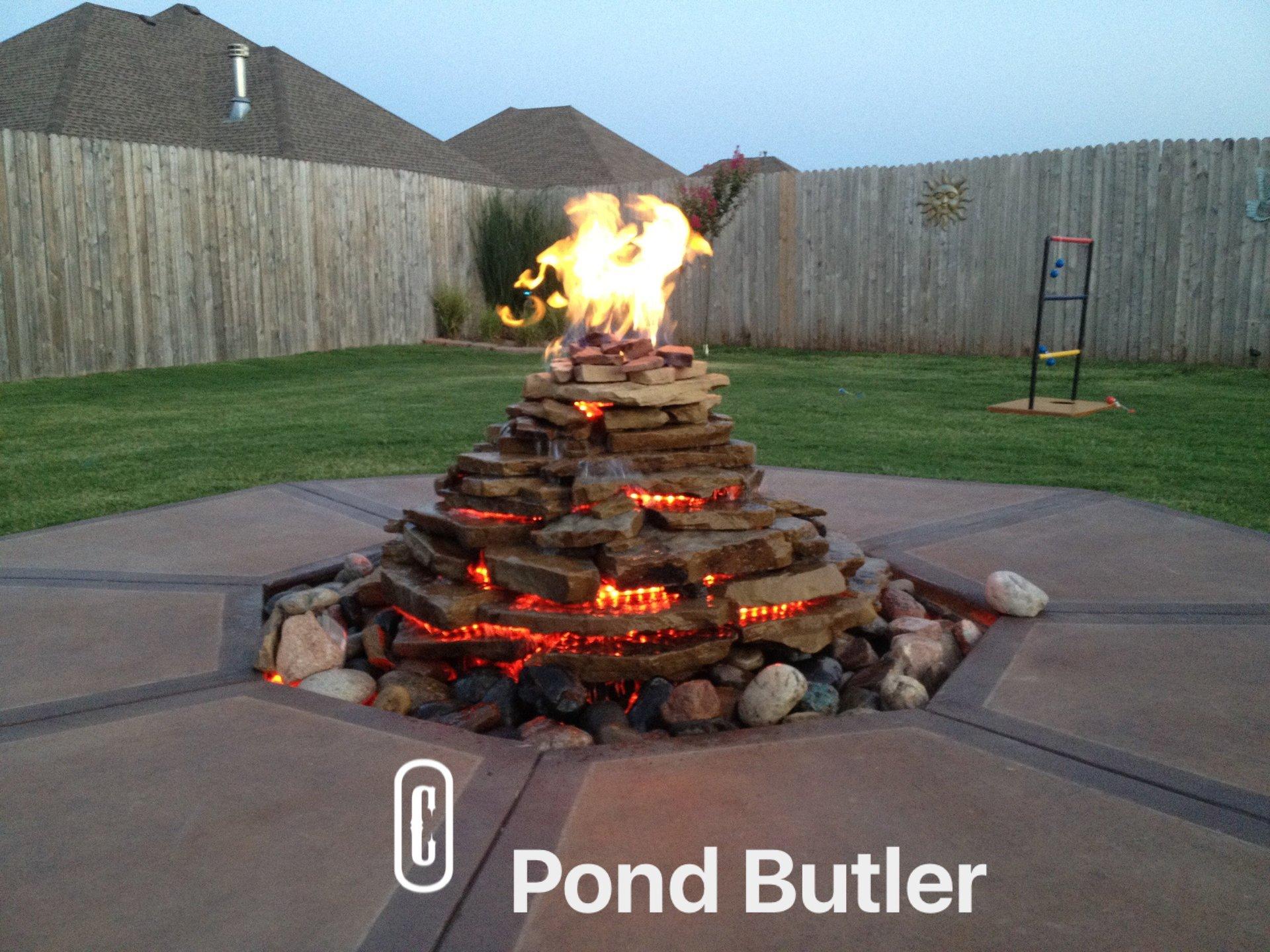 Pond Butler image 5