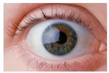Lazen by Eye Care Center image 4