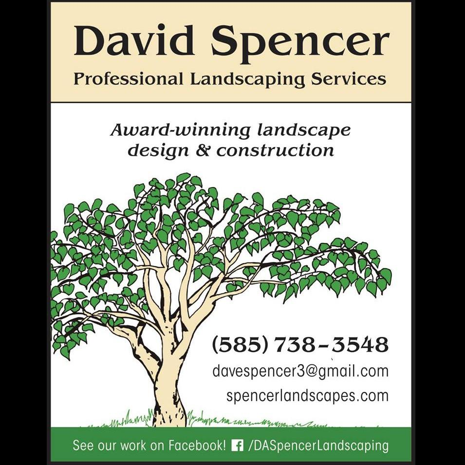 David Spencer Professional Landscaping Services