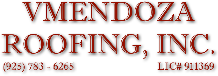 V Mendoza Roofing Inc