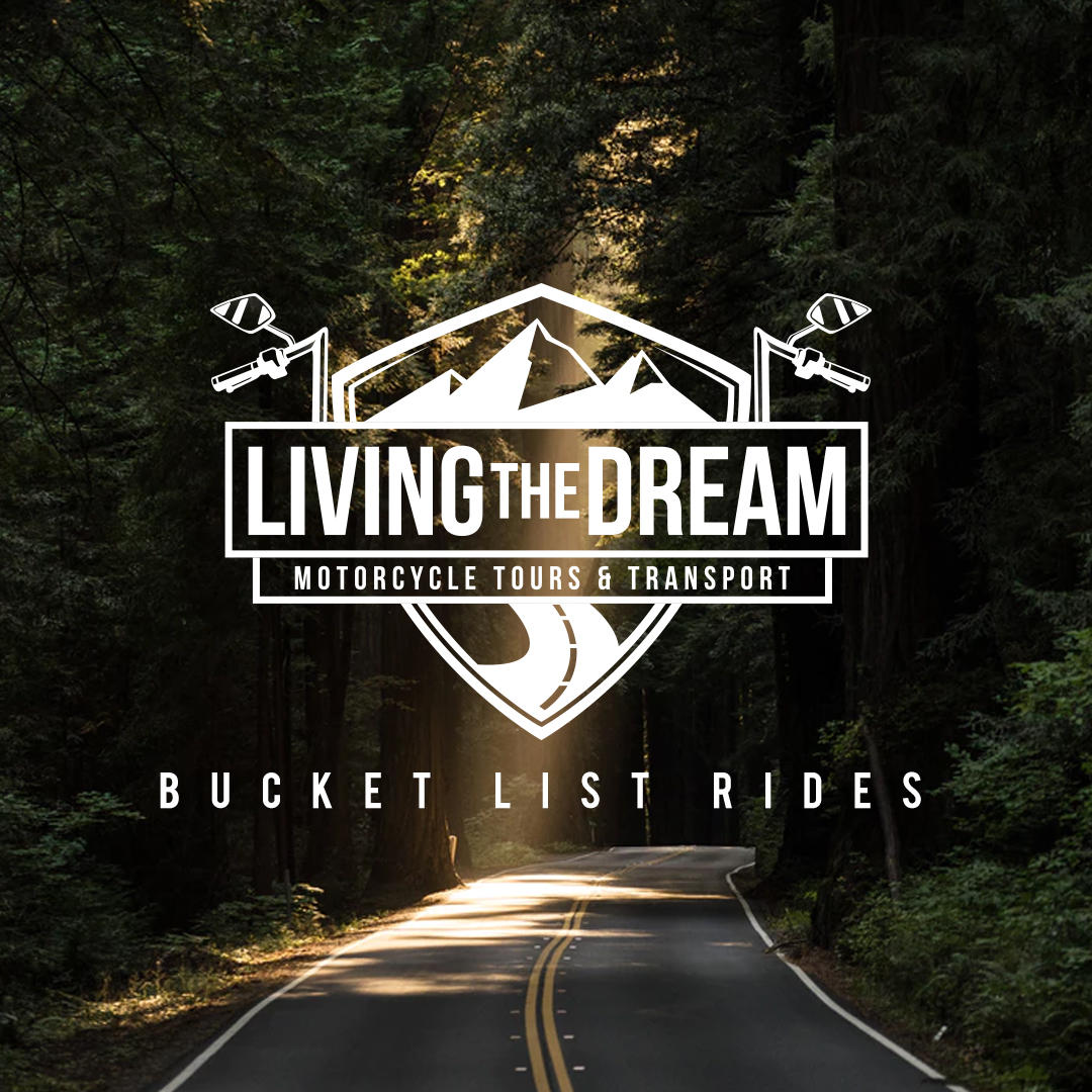 Living The Dream image 6