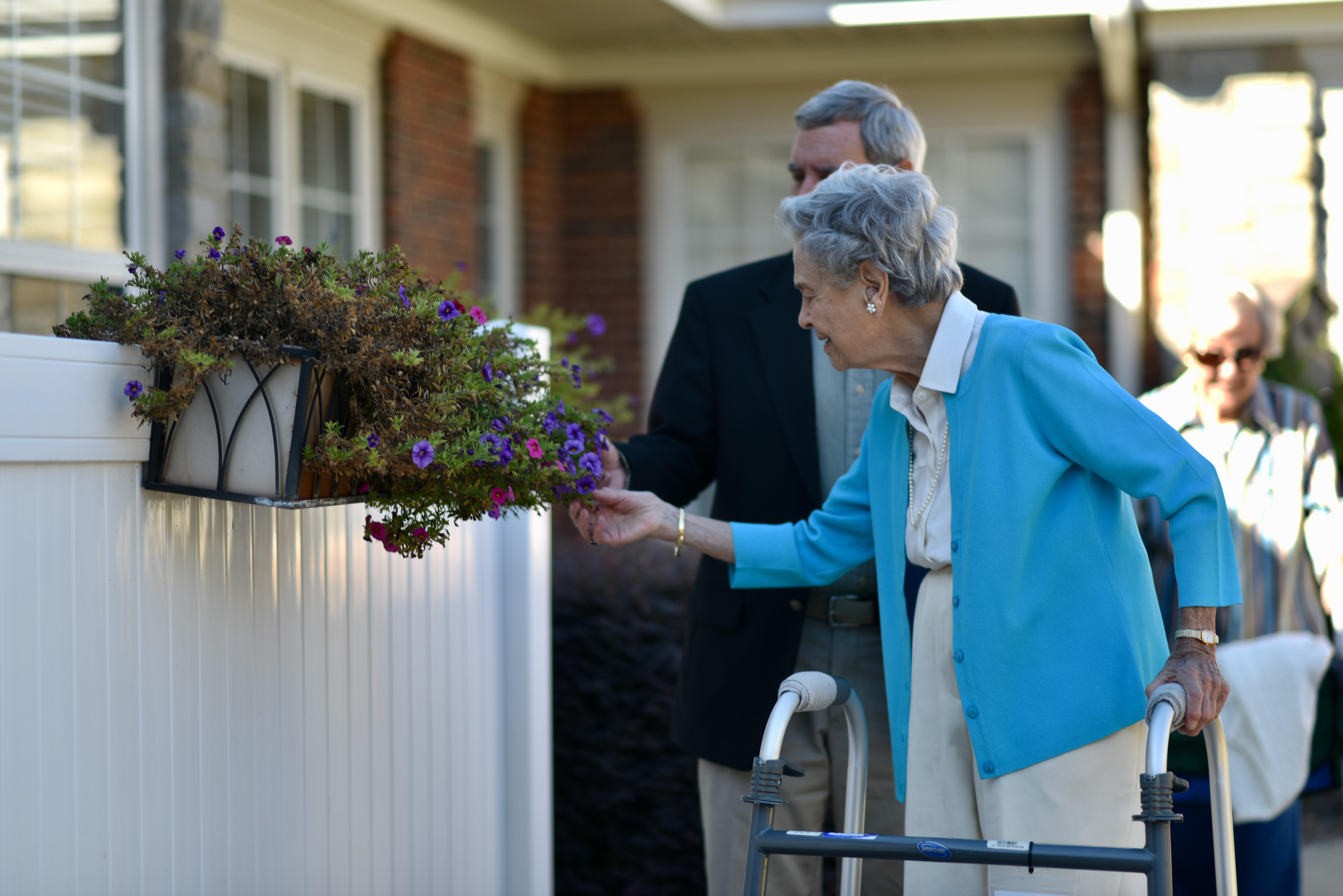 Home Care Assistance Greenville Sc