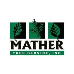 Mather Tree Service, Inc. image 0