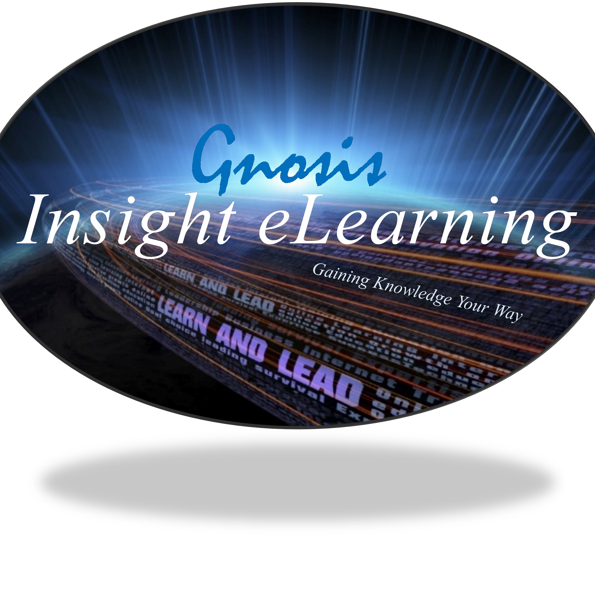Insight eLearning