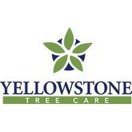 Yellowstone Tree Care