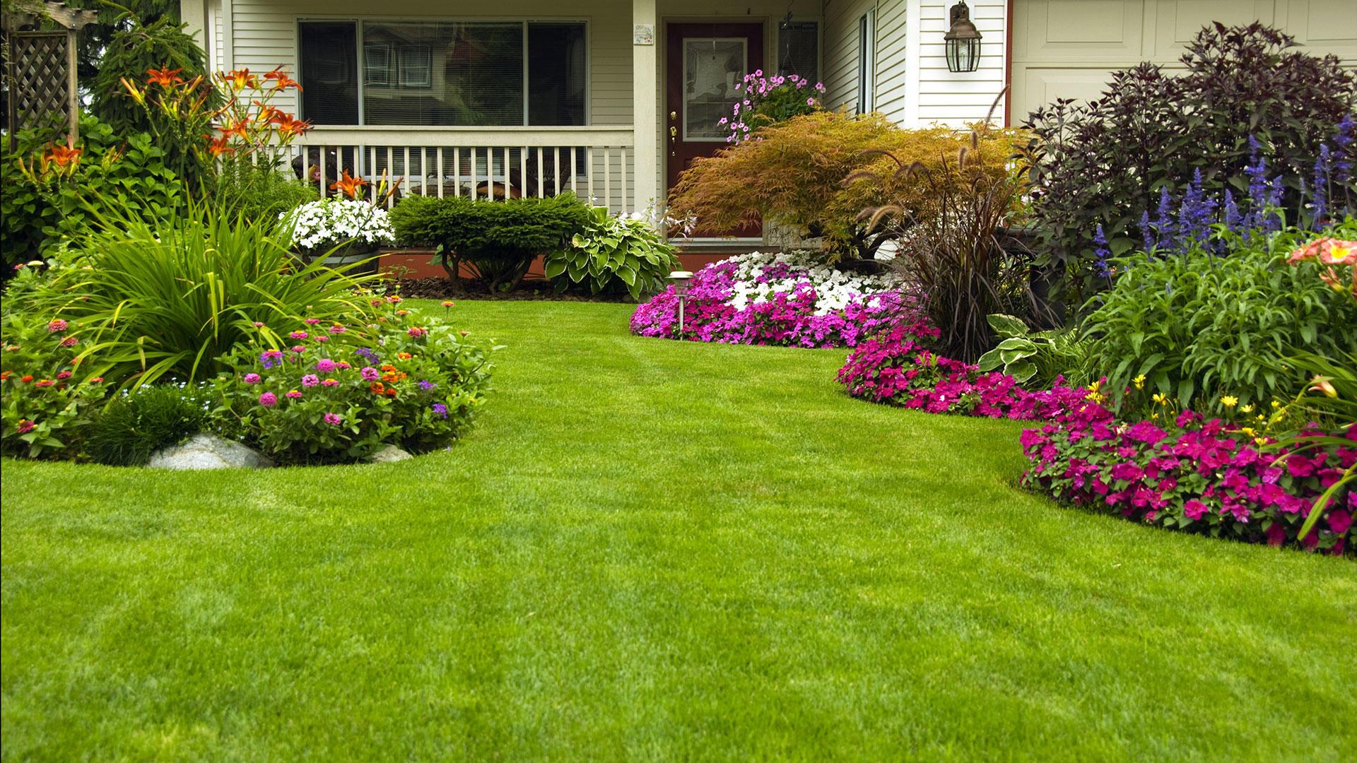Blue Ridge Mtn Property Services, LLC image 1