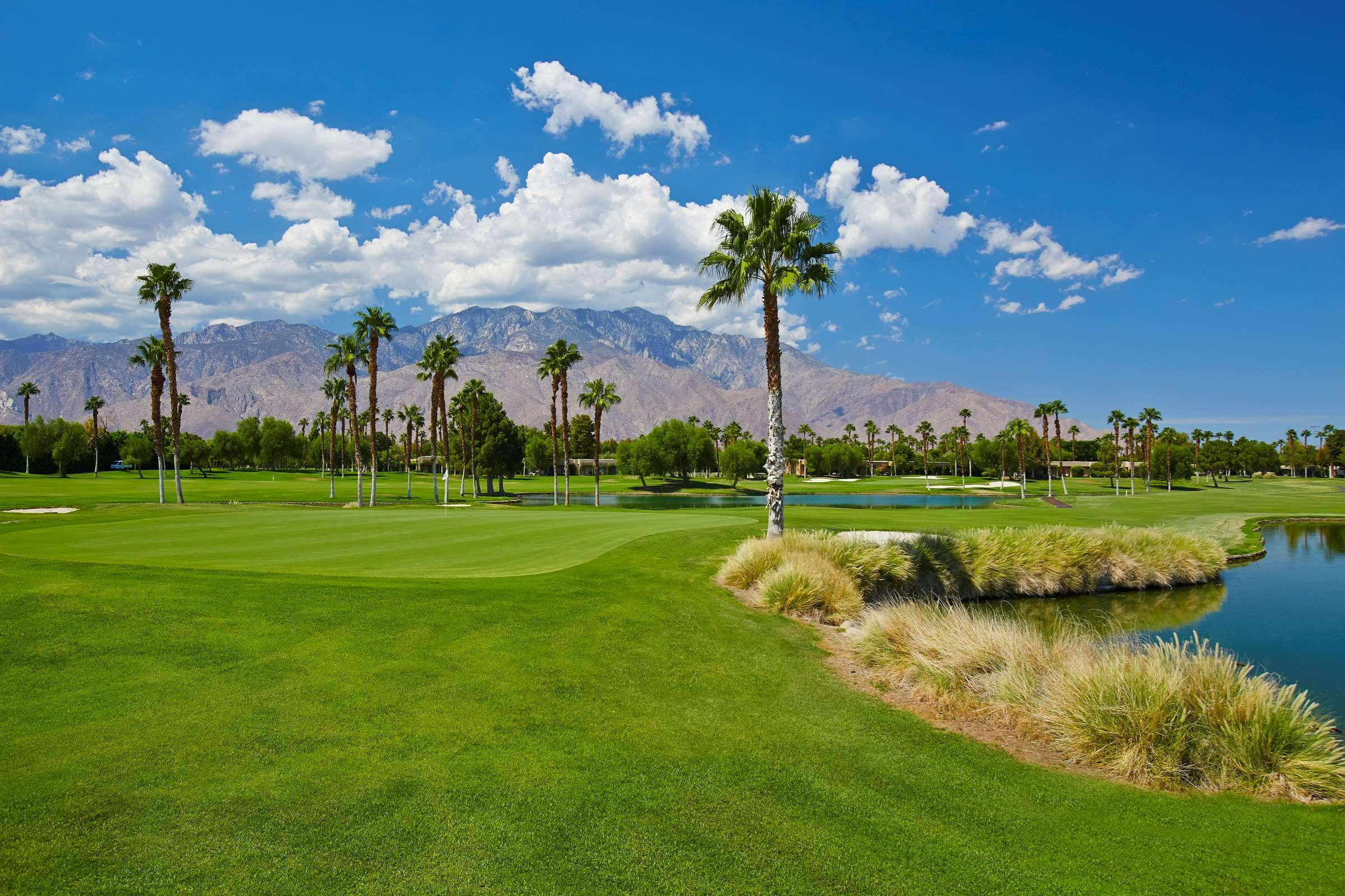 DoubleTree by Hilton Hotel Golf Resort Palm Springs image 46