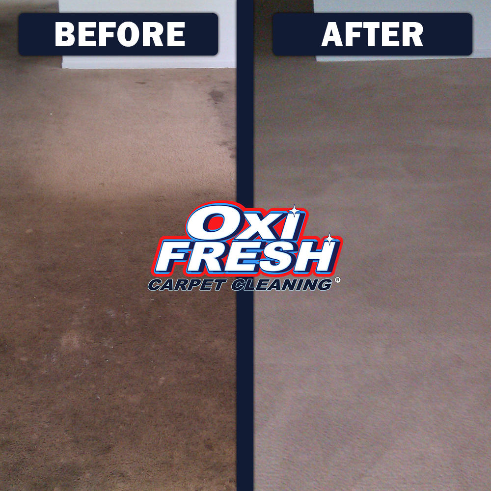 Oxi Fresh of Urbandale Carpet Cleaning image 7