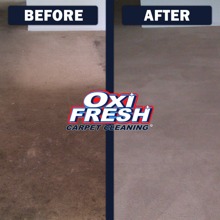 Image 9 | Oxi Fresh Carpet Cleaning