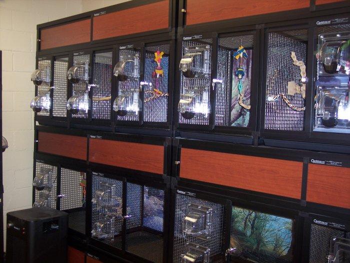 VCA Avalon-Heart of Gwinnett Animal Hospital - CLOSED image 4
