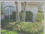 Lawn Patterns Of Tampa Bay image 4