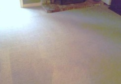 ABC Carpet Cleaners image 5