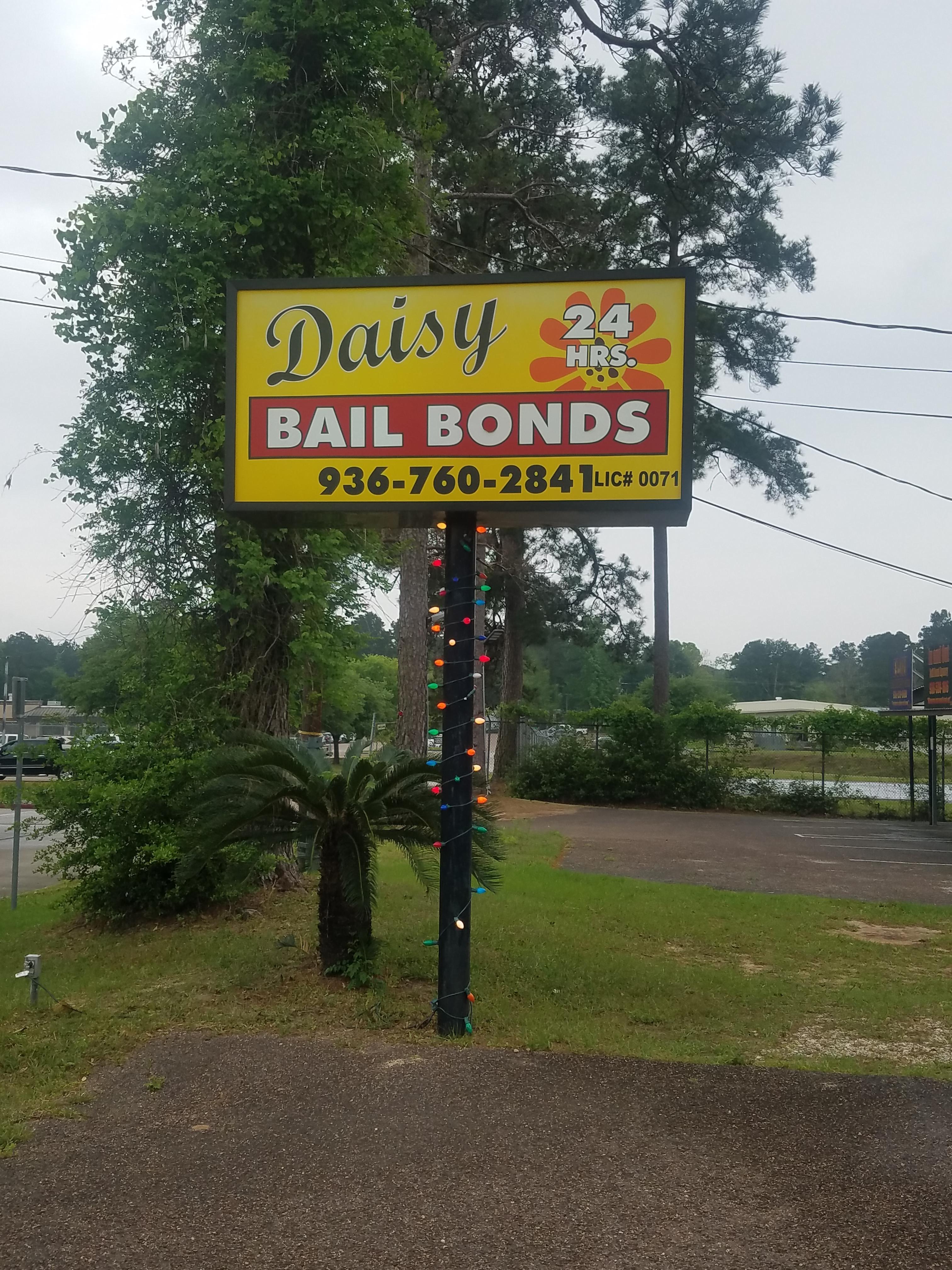 Daisy Bail Bonds image 1