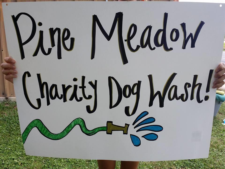Pine Meadow Veterinary Clinic image 6