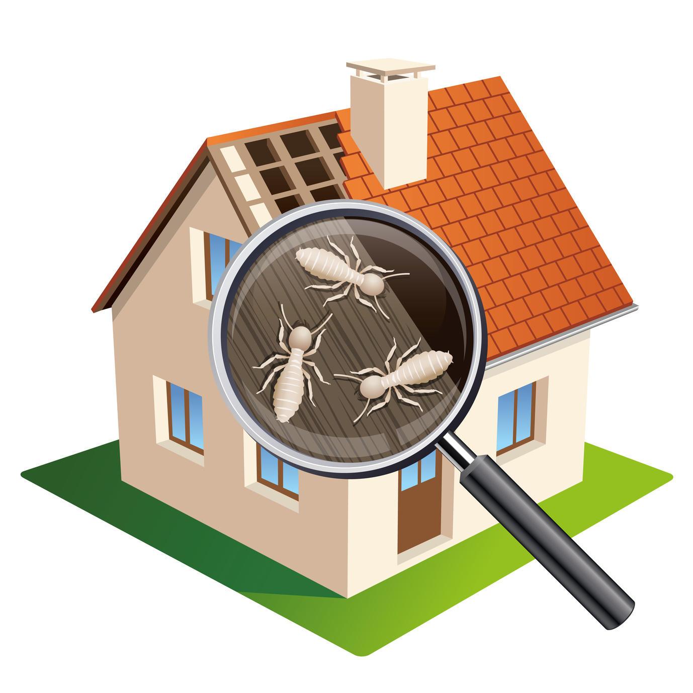 Safe-T Home Inspection LLC image 4