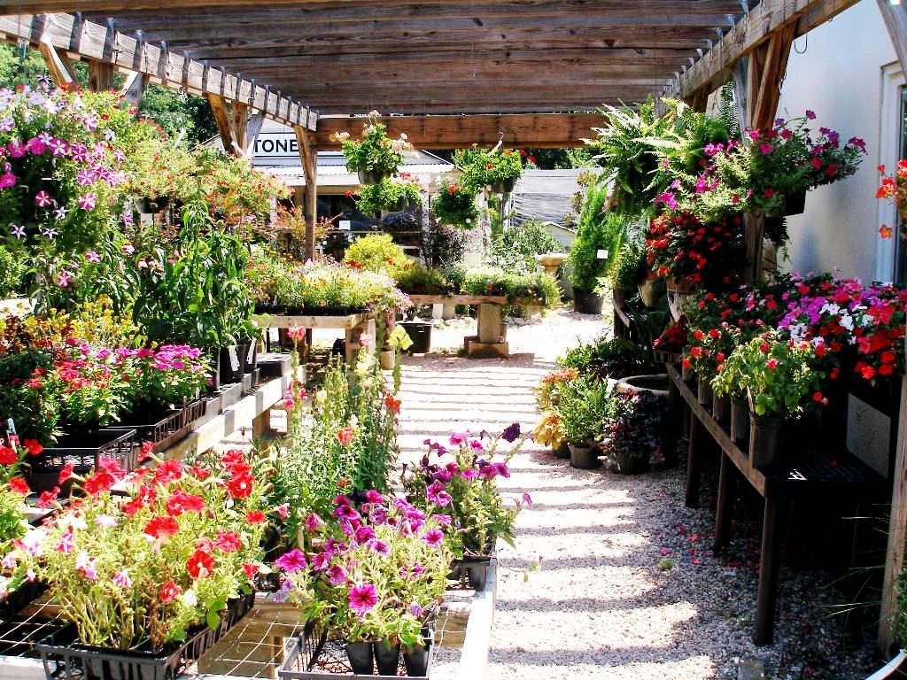 Driscoll's Garden Gifts & Memorials image 1