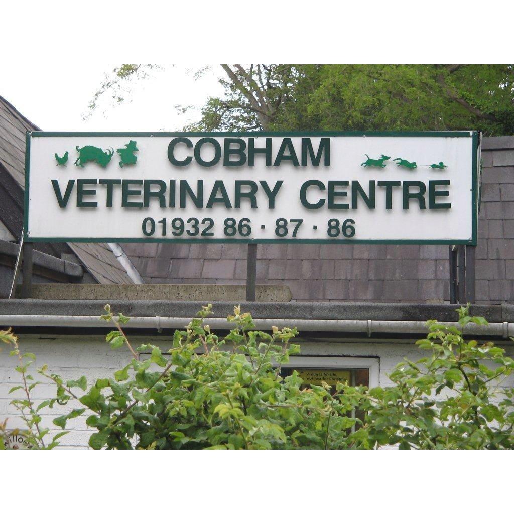 Cobham Veterinary Centre